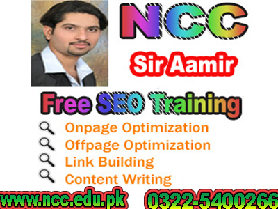 advance seo expert